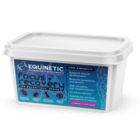 Equinetic Focus and Recovery