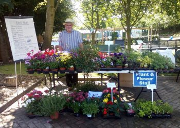 Garden Party plant stall
