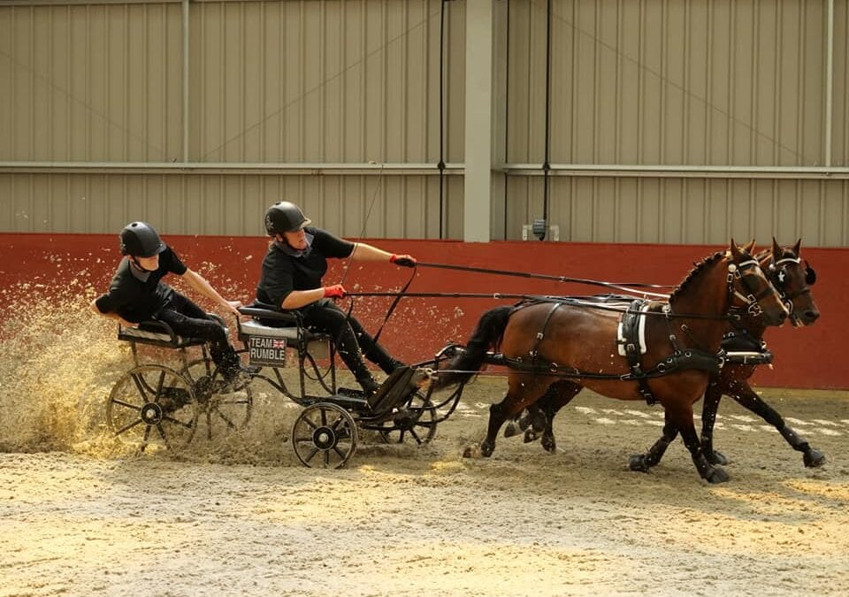 An Introduction to Carriage Driving